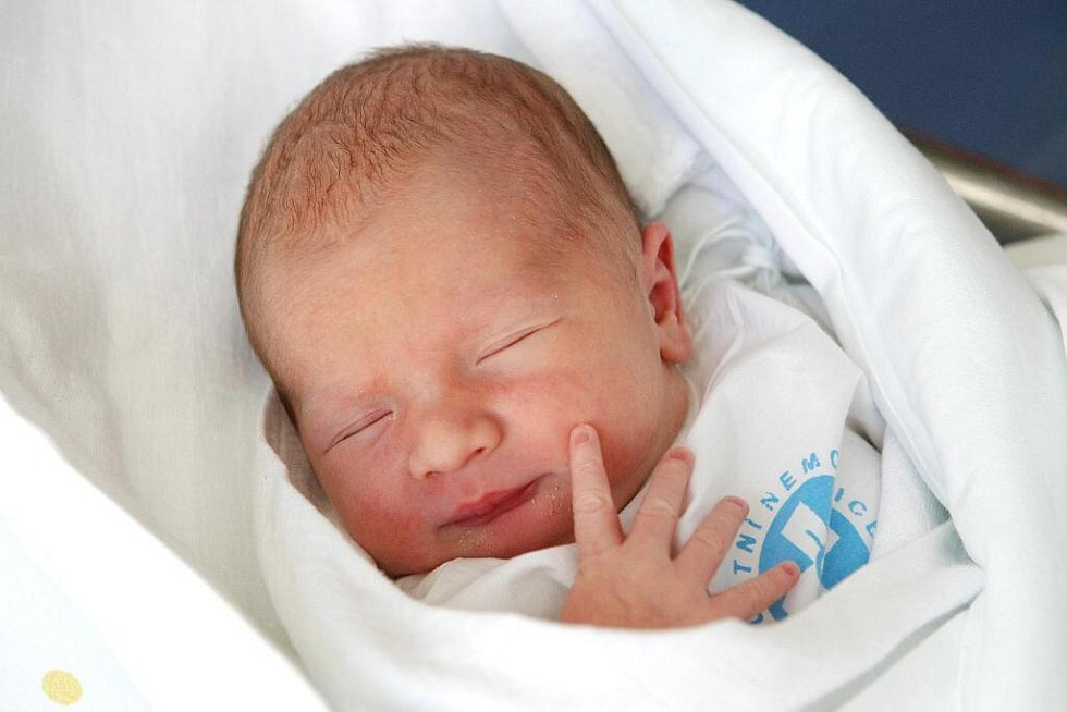Anna Štěpinová  se narodila  7. února  2011 v 16.02 hodin.  Vážila 3540 gramů a měřila 51 cm. Své první miminko si odvezli domů do Liberce Dana a Martin Štěpinovi.