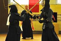 Šestnáct nejlepších bojovníků kendó z celé České republiky se sjelo do Hradce Králové, kde se utkali o titul mistra.