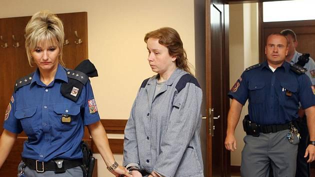 Verdikt nad ženou, která své dítě spálila v krbu, padne v září