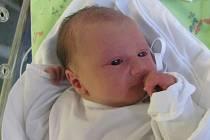 TIMON ŠIROKÝ se narodil 10. ledna v 7.02 hodin. Měřil 50 cm a vážil 3400 g. Velice potěšil své rodiče Janu a Oldřicha Široké, kteří společně se sestřičkou Zuzankou bydlí v Hradci Králové.