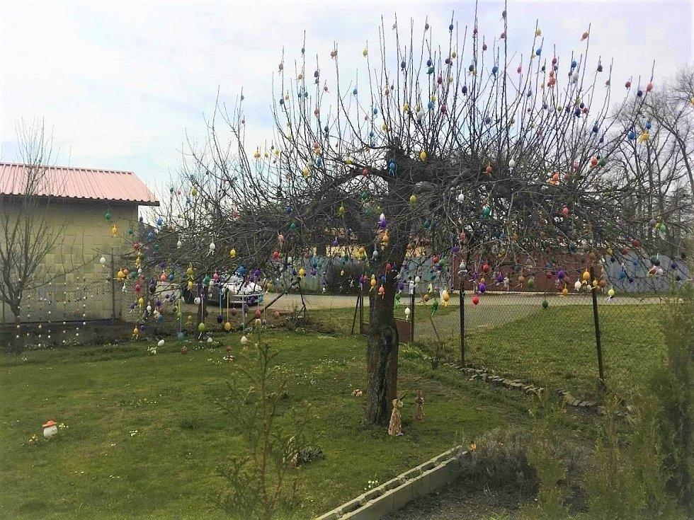 Velikonoční zahrada plná vajec.
