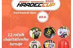 Sport Hradec Cup.