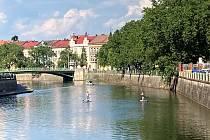 Paddleboarding v Hradci Králové.