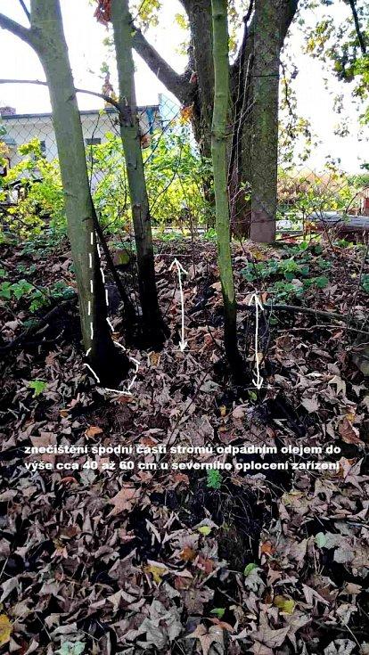 Ropné laguny a zničená vegetace. Policie a hydrologové zkoumají, zda ropné látky neznečistily i spodní vody.