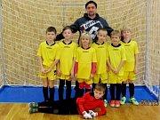 Halový fotbalový turnaj mladších přípravek ve Vysoké nad Labem - TJ Sokol Malšova Lhota.