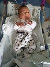 AARON KABÁT poprvé spatřil světlo světa 18. prosince v 11.45 hodin. Po porodu měřil 50 cm a vážil 3580 g. Velkou radost svým příchodem na svět udělal rodičům Denise a Petru Kabátovým ze Sedlice.