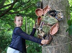KE ZKULTURNĚNÍ území nad přehradou Skalka v Chebu přispěli už v loňském roce žáci ze škol. Vybudovali tu Kouzelný les. Letos budou úpravy u vyhlídky Egerwarte pokračovat.