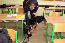 Policejní prohlídka školy v Plesné