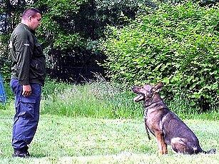 Dětem se výcvik služebních psů moc líbil