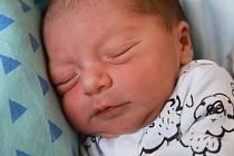 PAVEL LACI  se narodil v úterý 20. srpna v 8.18 hodin. Na svět přišel s váhou 2 590 gramů. Z malého Pavlíčka se těší doma v Plesné sestřičky Meliska s Kateřinou, maminka Kateřina a tatínek Pavel.