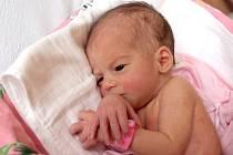 SYLVIE KOPECKÁ bude mít v rodném listě datum narození  sobotu  4. ledna v 14.01 hodin. Na svět přišla s váhou 2 570 gramů a mírou 49 centimetrů. Z malé Sylvinky se těší doma v Libé sestřička Viktorka spolu s maminkou Lenkou a tatínkem Lukášem.