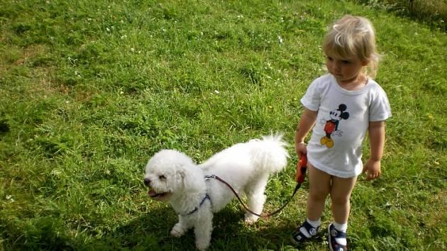 Hlídání čtyřnohých miláčků rodiny zajistí psí hotely.