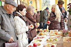 FESTIVAL JABLEK v Mariánských Lázních nabídne návštěvníkům nejen výstavu nejoblíbenějšího a nejrozšířenějšího ovoce, ale i jeho ochutnávku.