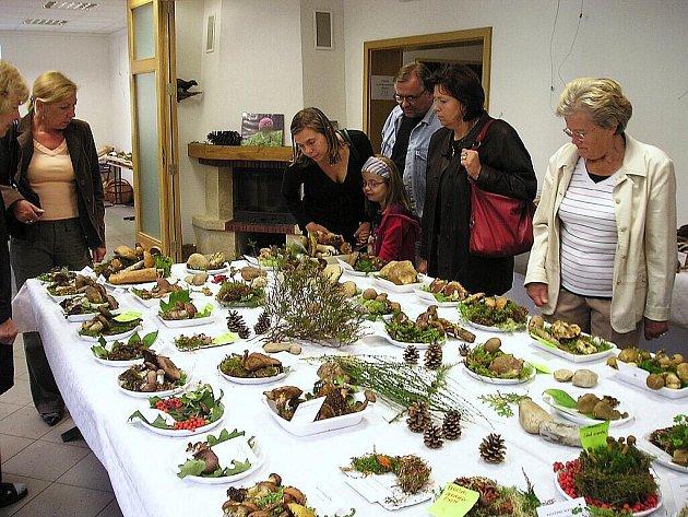 Výstava hub v Mariánských Lázních.