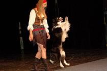 Alena Smolíková s fenkou Keysi v chebském divadle.