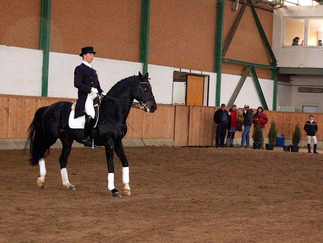 Jarní přehlídka koní v Mariánských Lázních