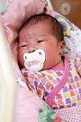 HANA TRAN přišla na svět v sobotu 2. ledna v 18.28 hodin. Při narození vážila 3 170 gramů a měřila 48 centimetrů. Z malé Haničky se těší dvě sestřičky spolu s maminkou Nguyen Vananh a tatínkem Phuong.
