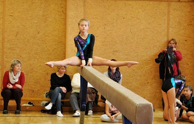 Na gymnastické soutěži Chebská bradla, která se konala v tělocvičně 1. ZŠ v Chebu, se dařilo zástupcům Lokomotivy Cheb.