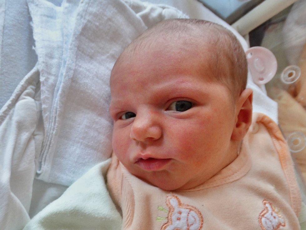 ADÉLA DVOŘÁKOVÁ se narodila 6. dubna ve 13:54 mamince Zdeňce a tatínkovi Tomášovi z Mariánských Lázní. Po příchodu na svět v plzeňské FN vážila sestřička Danečka 3300 gramů a měřila 50 centimetrů.
