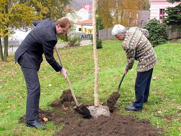 VEDOUCÍ MUŽI z ašské radnice – starosta Dalibor Blažek (vpravo) a místostarosta Pavel Klepáček zasadili první strom do nového parku. Místo je zatím bezejmenné.