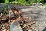 Legendární výletní restaurace Myslivna u Chebu byla zdemolována v roce 2013. Dnes ruiny zarůstají stromy a plevelem.
