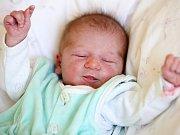ROZÁLIE TROJANOVÁ se narodila ve středu 16. Března v 7.16 hodin. Při narození vážila 2 700 gramů a měřila 47 centimetrů. Z malé Rozálky se těší doma v Plesné sourozenci Alexandr s Veronikou, maminka Veronika a tatínek Jaroslav.