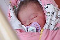 NELA NADĚŽDA VYSOKÁ se narodila v pondělí 19. ledna v 6.40 hodin. Na svět přišla s váhou 3 960 gramů a mírou 50 centimetrů. Doma v Chebu se malé Nelinky těší sestřičky Lilien, Růženka a Natálka, maminka Růžena a tatínek Tomáš.