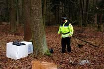 Chebští strážníci objevili v lese u Svatého Kříže na Chebsku zbytky čtyř mrtvých koz