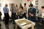 Jak vypadá sopečná struska anebo výrobky z taveného čediče? Nejen na tyto otázky odpovídá unikátní výstava, která je k vidění v Muzeu Karlovy Vary.