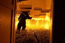 Pěstírna konopí, kterou chebští policisté objevili v Chlumečku u Chebu