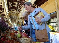 Pestrobarevná jablka a hrušky, voňavé, čerstvě upečené štrúdly a pestrobarevné dětské obrázky. Takový byl ve zkratce další ročník vyhlášeného Lázeňského festivalu jablek v Mariánských Lázních.