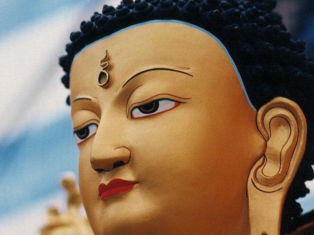 Přednášky představí buddhismus jako systém o podstatě mysli, který se během posledních třiceti let rozvíjí zejména v moderních společnostech.