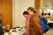 Čilý ruch a intenzivní vůně čerstvých hub opanovala prostory Správy CHKO Slavkovský Les v Mariánských Lázních.