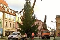 Vánoční strom v Chebu.