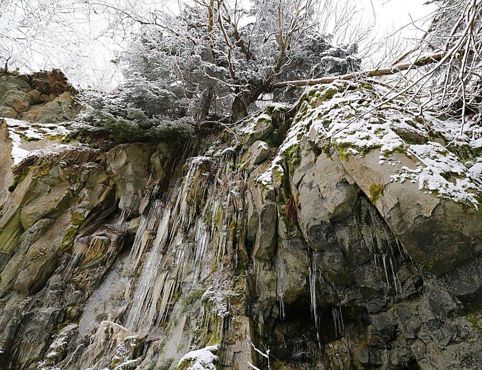 Na Nový rok vyrazili lidé na Podhorní vrch. Na zasněžené louce se někteří svezli na saních.