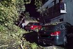 Silný vítr nezpůsobil během nedělního večera a pondělního dne žádné větší škody. Přesto museli hasiči vyjíždět v kraji k popadaným stromům.