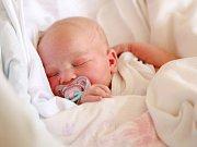 ANASTÁZIE ČECHVALOVÁ bude mít v rodném listu datum narození pondělí 7. března v 16. 54 hodin. Na svět přišla s váhou 3 730 gramů a mírou 52 centimetrů. Doma ve Velkém Luhu se z malé Stázinky raduje sestřička Klárka spolu s maminkou Radkou a tátou Tomášem.