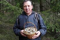 Smrkové lesy v okolí Chebu už nyní mohou potěšit vášnivé houbaře a kulináře. Roste zde chutná drobná houbička penízovka smrková.