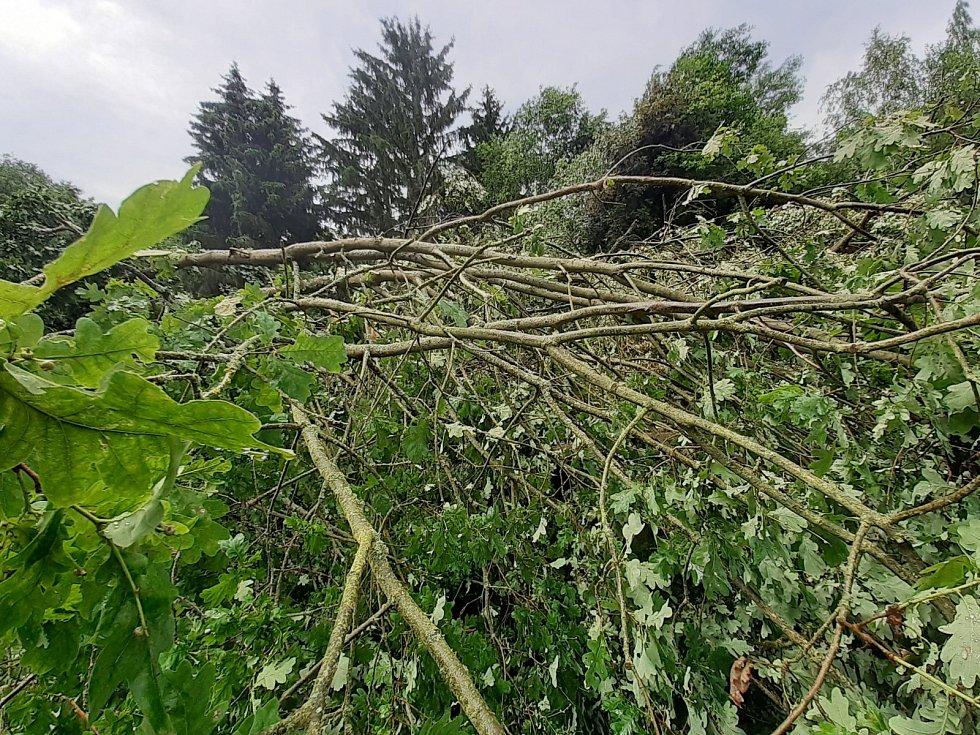 Silný vítr, který se nedávno prohnal i Chebskem, zlomil desítky let starou lípu u bývalé restaurace Myslivna u Chebu.