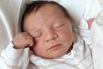 ELENA KÉPEŠOVÁ se narodila v chebské porodnici v sobotu 10. srpna v 10.14 hodin. Při narození vážil 3 350 gramů a měřil 48 centimetrů. Maminka Lucie a tatínek Štefan se radují z malé Elenky doma v Sokolově.