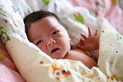 KIM VY BUI se poprvé rozkřičela v neděli 10. ledna v 0.54 hodin. Na svět přišla s váhou 2 910 gramů a mírou 47 centimetrů. Z malé holčičky se raduje doma v Chebu maminka Kim spolu se starší dcerkou Thu.