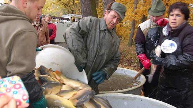 NA ČERSTVÉ RYBY se stála dlouhá fronta. Rybáři téměř nestačili zásobovat prodejce.