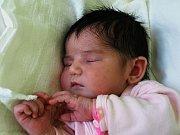 TEREZA MACHOVÁ se narodila ve čtvrtek 4. března ve 21.20 hodin. Při narození vážila krásných 3710 gramů a měřila 51 centimetrů. Doma v Mokřinách u Aše se z malé Terezky raduje desetiletý Radeček, maminka Ivana spolu s tatínkem Romanem.