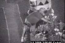 Záběry z bezpečnostní kamery na zloděje květin