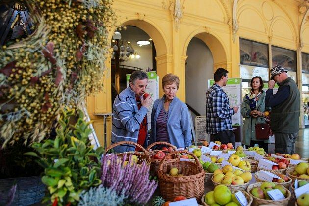 ČESKOU SUPERPOTRAVINU tradičně oslavuje i mariánskolázeňský Festival jablek. Na něm mohou lidé ochutnat nejen regionální odrůdy, ale i různé dobroty z jablek.
