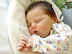 PATRIK GAŠPAR se poprvé rozkřičel v úterý 20. března v 23.08 hodin. Na svět přišel s váhou 4380 gramů a mírou 54 centimetrů. Doma v Aši se z malého Patrička těší maminka Petra spolu s tatínkem Milanem.