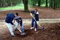 Zahraniční dobrovolníci pomáhali v minulých letech při úklidu parku u kynžvartského zámku