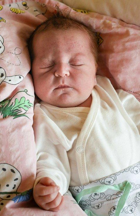 MARIE DUNKOVÁ se narodila v úterý 19. listopadu v 7.04 hodin. Na svět přišla s váhou 3 900 gramů. Doma v Aši se z malé Marušky těší sourozenci František, Simonka a Kristýnka, maminka Kamila a tatínek Santiago.