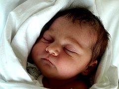 ADRIANA GATNAROVÁ bude mít v rodném listě datum narození čtvrtek 4. listopadu v 9.45 hodin. Adrianka při narození vážila 3100 gramů a měřila 47 centimetrů. Doma v Chebu se malé dcerušky raduje maminka Helena spolu s tatínkem Michalem.