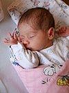 ANNA NĚMCOVÁ se narodila 7. března v 0.14 hodin. Na svět přišla s váhou 2 220 gramů. Doma v Klimentově se z malé Aničky raduje maminka Soňa a tatínek Martin.